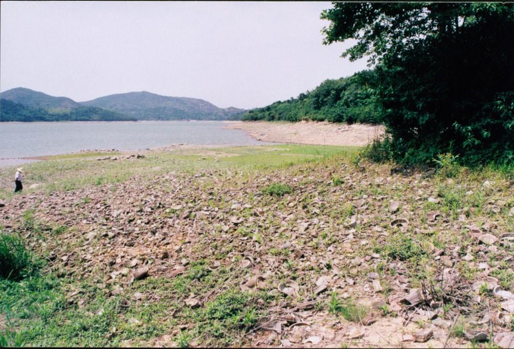 上林湖(茭白湾)堆积现状图